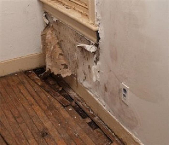 Water Damage Indoor Relative Humidity and Moisture issues, Inside Your Property, in Woodbury, NJ