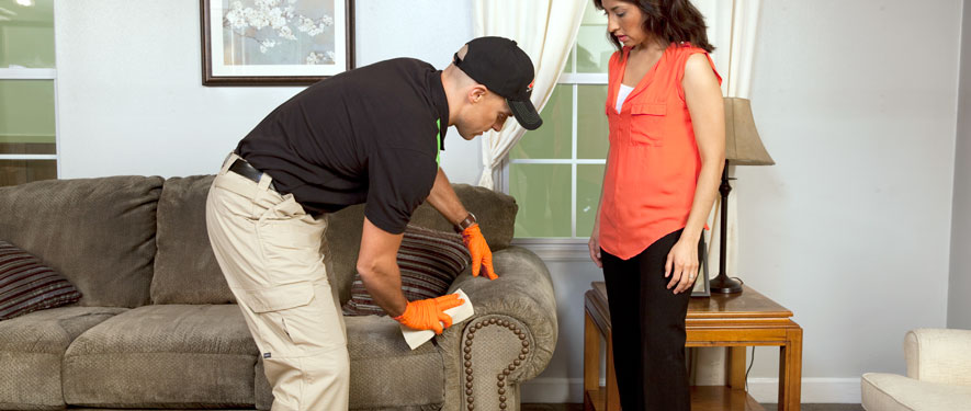 Woodbury, NJ carpet upholstery cleaning