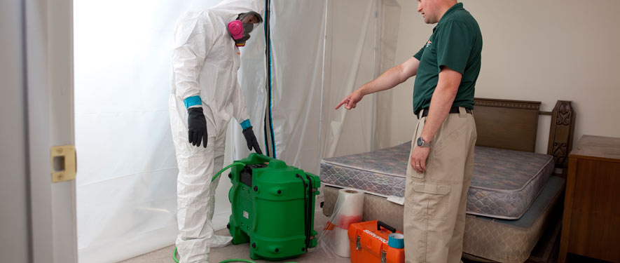 Woodbury, NJ mold removal process